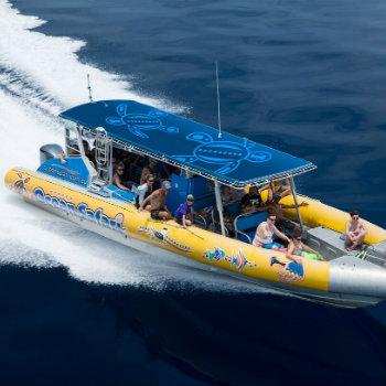 ocean safari flying tour