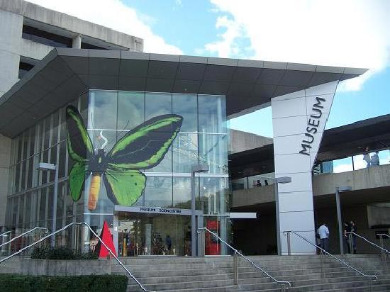 Foyer Museum Queensland : Car rental brisbane airport find the lowest rates