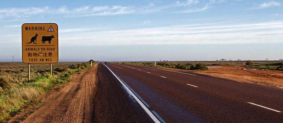 Car Rental South Australia Book With Vroomvroomvroom