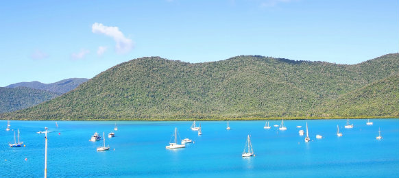 beautiful scenery at shute barbour in airlie beach