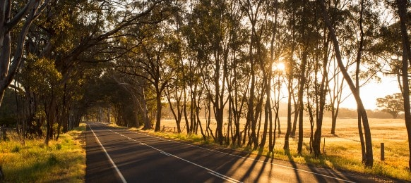 bendigo-maldon road at sunset on a spring evening