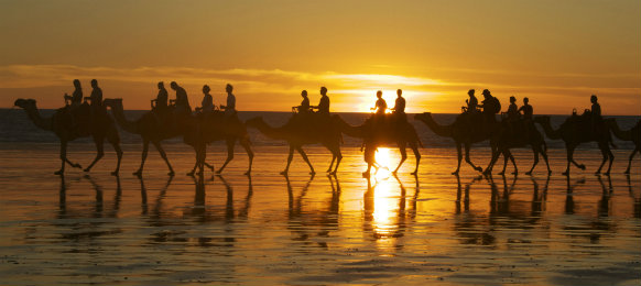 camel riders on cable beach in broone