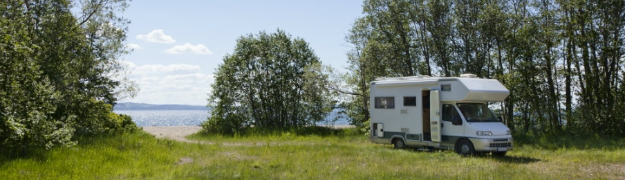 blue campervan beside the sea and surrounded by trees