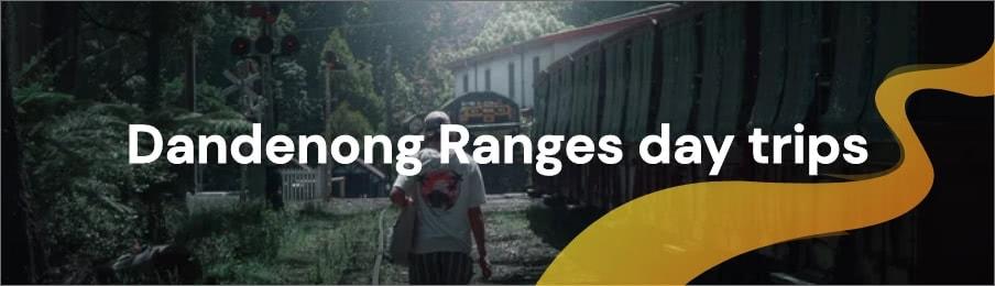 Dandenong Ranges day trips