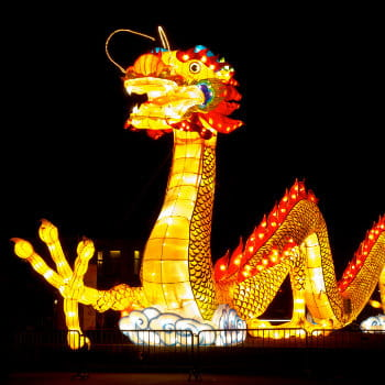 Giant dragon lantern at Chinese New Year light festival
