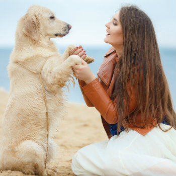 Girl with dog on the beach by the sea in australia