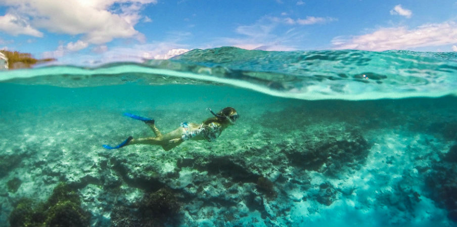 Heron Island by The Blonde Nomads
