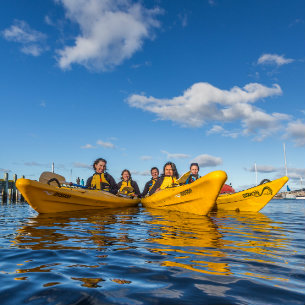 kayakers enjoying their tours in hobart city