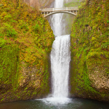 Multnomah falls and Benson footbridge, Oregon