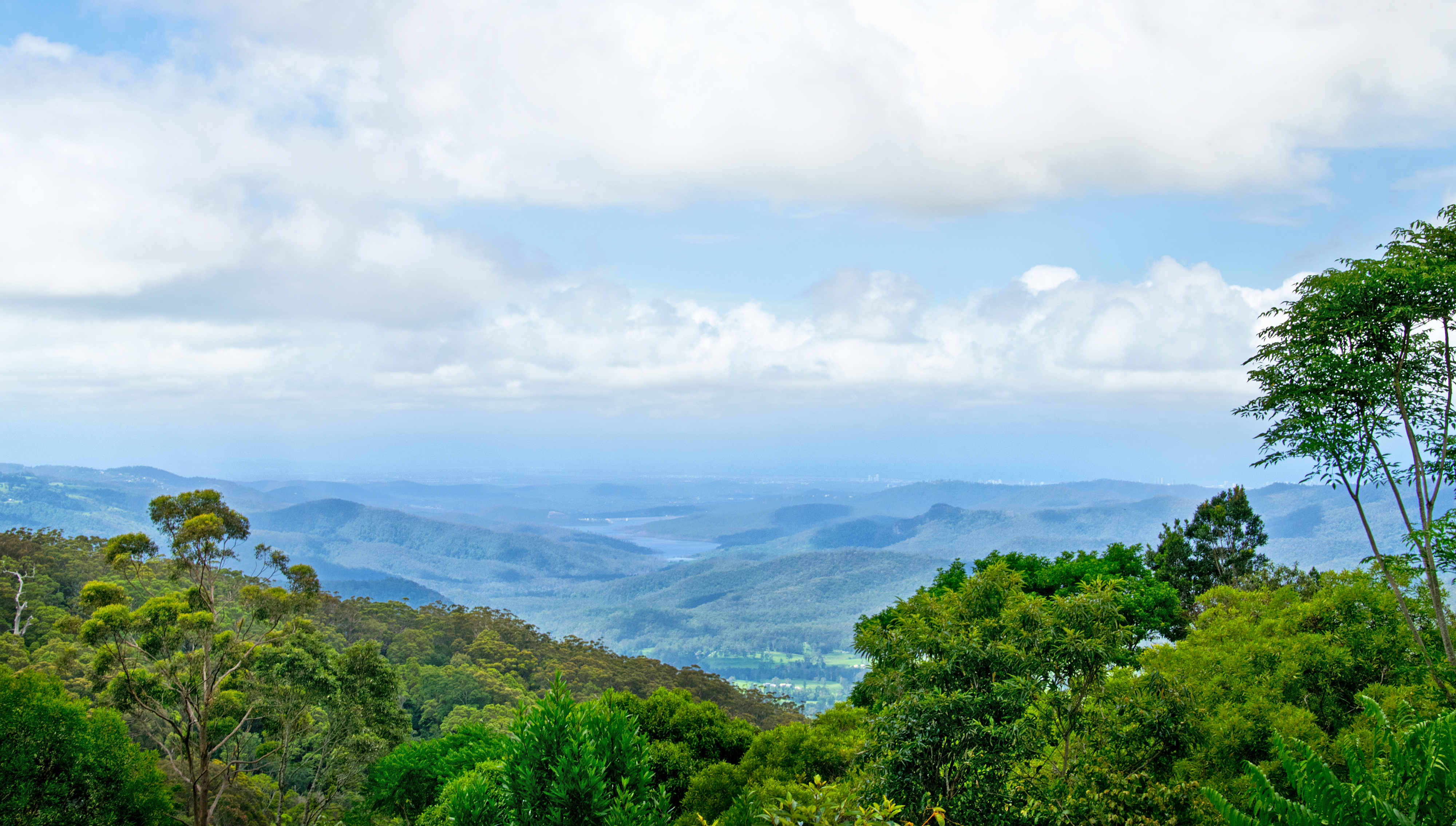 the Numinbah Valley scenic drives