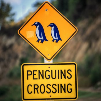 penguin crossing sign in Oamaru, NZ