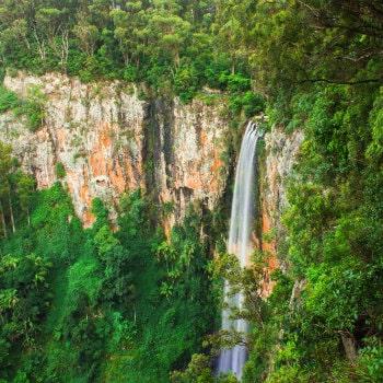 purling brook falls at springbrook national park