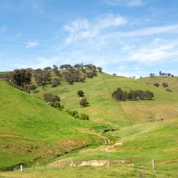 rural farmland in southern nsw
