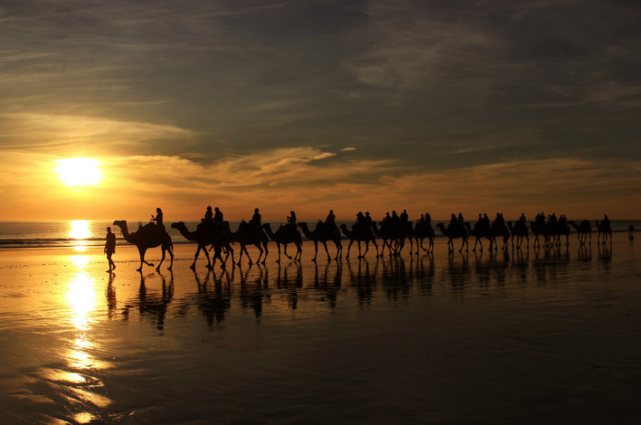 sunset camel ride in cable beach, broome