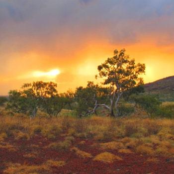 sunset cape range national park