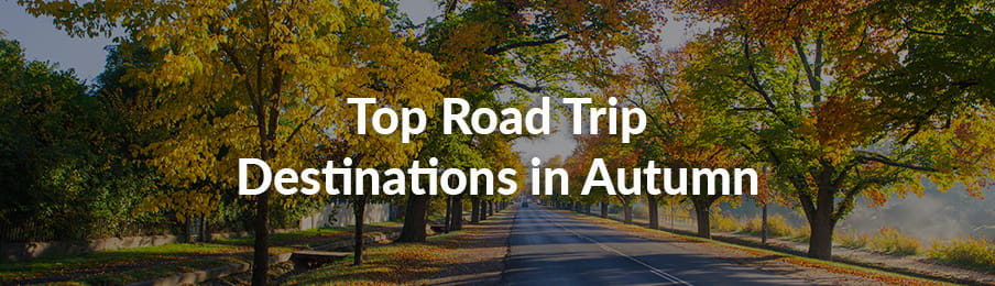 Top Autumn Road Trip Destinations in AU guide banner