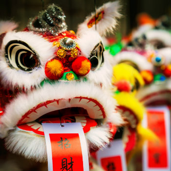 traditional colorful chinese lion popular during chinese new year in australia
