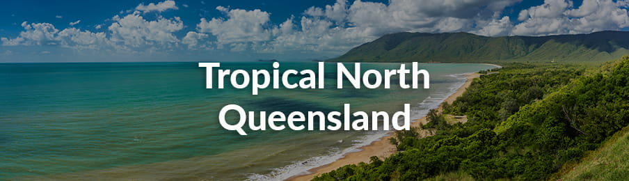 Tropical North Queensland Road Trips Guide banner