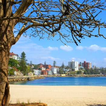 view of manly beach, sydney