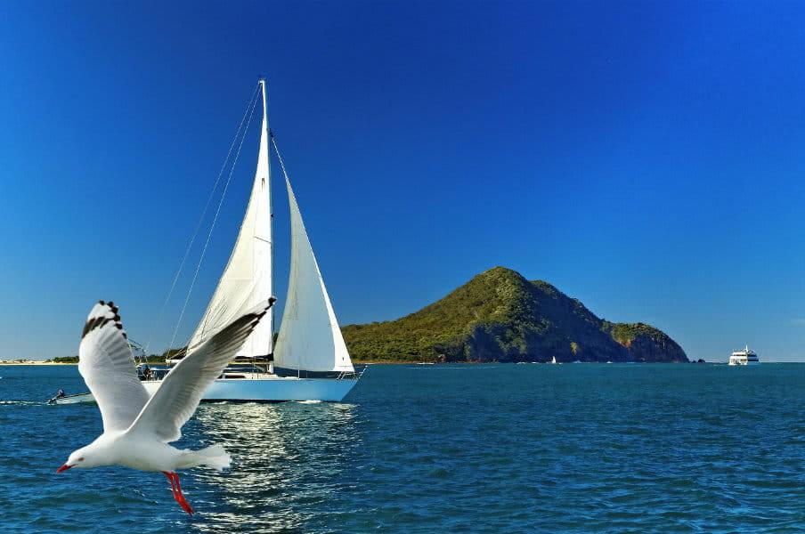 Yacht sailing past Yacaaba Head, Port Stephens, NSW, AU